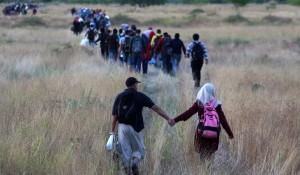 vluchtelingen hongarije